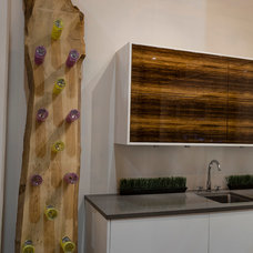 Contemporary  by Elmwood Fine Custom Cabinetry