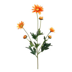 Silk Plants Direct - Silk Plants Direct Daisy (Pack of 6) - Orange - Silk Plants Direct specializes in manufacturing, design and supply of the most life-like, premium quality artificial plants, trees, flowers, arrangements, topiaries and containers for home, office and commercial use. Our Daisy includes the following:
