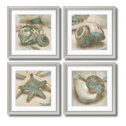 Amanti Art - John Seba 'Coastal Gems- set of 4' Framed Art Print 29 x 29-inch Each - With an eye for detail and a deep appreciation for his subject matter, photographer John Seba celebrates the beauty of seashells. Seen up close in this sepia and patina toned image, the shells in this Coastal Gems set take on sculptural, abstract qualities.