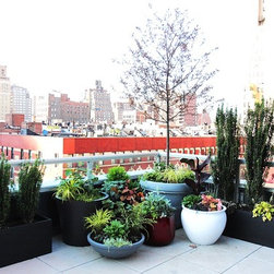 Best Custom Wood Planter Boxes by nyplantings - Our Trade mark Custom IPE Planter Design Design Shown here with Custom built IPE Fence in Manhattan NYC Roof Garden.New York Plantings Garden Design and Landscape Construction Crews work to find the best route to the project and do their best to deliver the Landscaping and Hardscape Materials in a neat efficient manner. Not many companies in NYC have the experience in Garden and Landscape Materials delivery that New York Plantings has. Fully licensed and insured....of course!