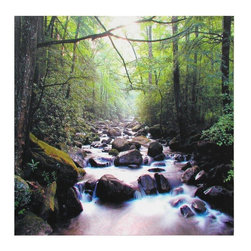 Oriental Furniture - River of Life Canvas Wall Art - Bright-hued print of a bustling forest brook sheltered from the afternoon sun. Long exposure gives the running water a mist-like quality. Printed with the latest ink jet technology on primed canvas stretched over a wood frame. Bring a bit of the beautiful outdoors into your living room, den or office.