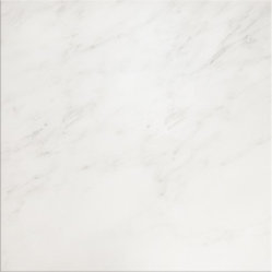 Bianco Carrara Polish Tile 18X18 - Like the cool look and feel of an Italian palazzo, these time honored Italian carrara white marble tiles will make a splash in any home project. Bathroom, terrace or entryway, you can find plenty of buonissimo uses for these formidable tiles.