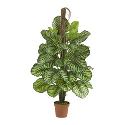 """Nearly Natural - 52"""" Calathea Silk Plant (Real Touch) - When simple green isn't enough, this Calathea offers a unique contrast. Yes, it's a large, lush, green tree, but the leaves are intricately patterned to offer a visual appeal that you cannot get anywhere else. Add in the fact that, thanks to our real touch process, it feels as good as it looks, and you have a real winner. Perfect for a home or office, and also makes a great gift. Colors: Green; Pot Size: W: 8 in, H: 7 in. Height: 52 in; Width: 30 in; Depth: 30 in."""