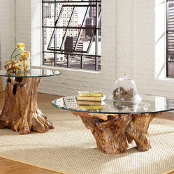 Hammary Hidden Treasures 2 Piece Root Ball Coffee Table Set