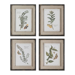 Uttermost - Uttermost Butterfly Plants 4 Framed Art Panels - 4 Framed Art Panels belongs to Grace Feyock Collection by Uttermost Prints Are Accents By Heavily Distressed, Black Outer Wooden Frames With Heavily Textured, Off-white Inner Lips With A Heavy Taupe Wash. Center Portion Of Frames Are Covered In A Sand Faux Linen. Wall Art (4)