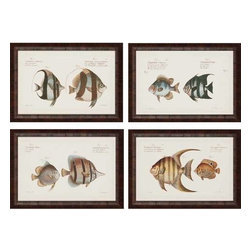 Paragon Art - Paragon Antique Fish ,Set of 4 - Artwork - Antique Fish ,Set of 4         ,  Paragon Giclee               Artist is Bloch , Paragon has some of the finest designers in the home accessory industry. From industry veterans with an intimate knowledge of design, to new talent with an eye for the cutting edge, Paragon is poised to elevate wall decor to a new level of style.