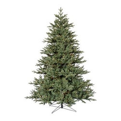 Blue Noble Fir Pre-lit Christmas Tree - Beautiful and lovely, the Blue Noble Fir Pre-lit Christmas Tree is designed to let you bring in Christmas with a joyous spirit. With a strong PE/PVC construction, this Christmas tree comes in heights ranging from 6.5 feet to 12 feet and widths ranging from 57 inches to 83 inches, for your convenience. The inclusion of clear and multi-colored lights ranging from 450 to 1800 spread over 2169 to 8187 tips makes this tree look even more decorative making it a must-have this festive season. Specifications for the 6.5-foot TreeShape: FullBase Width: 57 inchesNumber of Bulbs: 450Number of Tips: 2169Specifications for the 7.5-foot TreeShape: FullBase Width: 65 inchesNumber of Bulbs: 800Number of Tips: 3091Specifications for the 9-foot TreeShape: FullBase Width: 72 inchesNumber of Bulbs: 950Number of Tips: 4547Specifications for the 12-foot TreeShape: FullBase Width: 83 inchesNumber of Bulbs: 1800Number of Tips: 8187