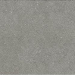 Porcelain Floor Tile - 12-in x 24-in Mitte Gray Glazed Porcelain Floor