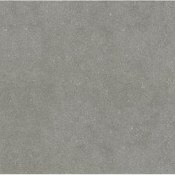 Mitte Gray Glazed Porcelain Floor Tile - 12-in x 24-in Mitte Gray Glazed Porcelain Floor Tile