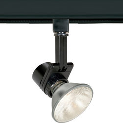 "WAC - Contemporary WAC Studio 733 L Black Track Head for Lightolier - Large architectural-grade spot luminaire. Black finish. Die-cast aluminum construction. Takes one maximum 50 watt PAR20 or 75 watt PAR30 bulb (not included). Lockable precision aiming with guide marks. 350-degree horizontal rotation 90-degree vertical tilt. Tool-free re-lamping. For use on Lightolier track lighting systems. 10 1/2"" high. 4 1/2"" wide.  Large architectural-grade spot luminaire.  Black finish.  Die-cast aluminum construction.  Takes one maximum 50 watt PAR20 or 75 watt PAR30 bulb (not included).  Lockable precision aiming with guide marks.  350-degree horizontal rotation 90-degree vertical tilt.  Tool-free re-lamping.  For use on Lightolier track lighting systems.  10 1/2"" high.  4 1/2"" wide."