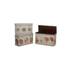 ANTIQUE TIN BOXES-Signature Sea Mist finish - ANTIQUE TIN BOXES; Signature Sea Mist finish with sea shells and urchins hand-painted on set of antique replica tin boxes. Set/3