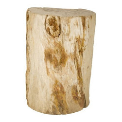 Petrified Wood #143739 - For a summer home, bring in organic pieces. This side table is reminiscent of driftwood.