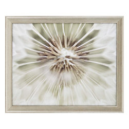 Paragon - Dandelion II - Framed Art - Each product is custom made upon order so there might be small variations from the picture displayed. No two pieces are exactly alike.
