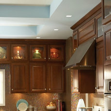 Traditional Kitchen by Lite Line Illuminations, Inc.