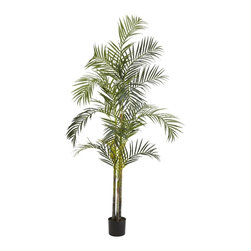 Nearly Natural - 7 ft. Areca Palm Silk Tree - Vibrant green leaves overflowing downward. Features 580 long narrow leaves. Never needs watering or maintenance. Construction Material: Polyester material, Iron wire, Plastic. 36 in. W x 36 in. D x 84 in. H ( 17 lbs. ). Pot Size: 7 in. W x 6 in.HTowering over most people at 7 feet in height, this aesthetically pleasing arrangement of four trunks is sure to delight. With 564 long rich green leaves fanning out in intricate geometric patterns and finally tapering off into a downward cascade, it's no wonder one would choose this silk Areca Palm tree to bring a bit of tropic decor to any living arrangement. Comes with pot, faux soil, and (of course) maintenance free upkeep.