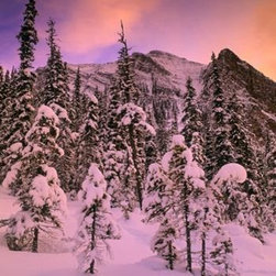 Wallmonkeys Wall Decals - Snow Covered Trees at Lake Louise Wall Mural - 18 Inches H - Easy to apply - simply peel and stick!