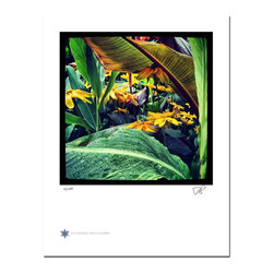 """London Flowers 04, Limited Edition, Photograph - """"London Flowers 04 is the fourth in a series of flower photographs taken on a rainy day in London at Victoria Gardens along the Thames River.   Technical Information:  This is a limited edition photograph produced on Epson Premium Presentation Fine Art Matte Media using an archival pigment. Each photograph is produced, signed and numbered by the artist. Only one hundred or fewer prints are produced in each series. Prints are delivered in a crystal clear presentation sleeve supported with a white backing board.   On 8.5 x 11 media the printed image is 7 x 7 inches, leaving a three quarter inch white border on three sides with a weighted bottom. This white border allows for for easy framing with or without a matte. Perfect for small spaces that need a splash of unique artistry.  Please feel free to contact me with any additional questions you may have."""""""