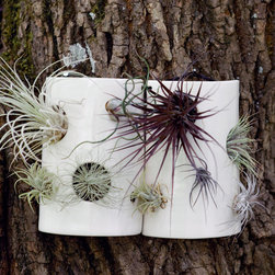 Airplant Wall Tile - Air plants are a personal fave of mine becuase they require very little — i.e., they are very difficult for me to accidentally kill. These tiles hold several at once much like a planter, but since they require no dirt, they are lightweight and can be hung most anywhere.