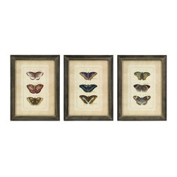 "IMAX - Butterfly Collection Wall Art - Set of 3 - Set of three framed colorful butterfly study prints. Item Dimensions: (16.25""h x 12.25""w)"