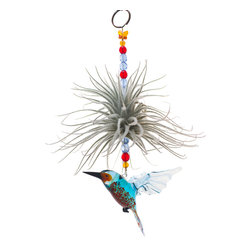 Spirit Pieces - Flying Glass Lampwork Kingfisher Bird Figurine and Air Plant Living Ornament - This wonderfully alive home decor accent item is great for windows, mantles or door thresholds.  Hang off a bird house or bird feeder and watch the birds react!