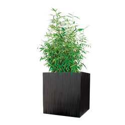 Modern Outdoor Kenji Planter