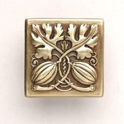 Kitchen Garden Hardware Collection - Autumn Squash Knob in Antique Brass