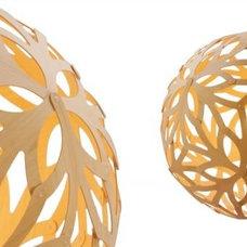 Pendant Lighting by David Trubrudge