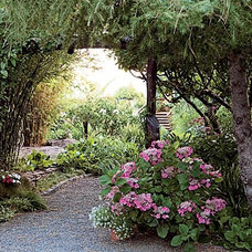 Paths leading you through the garden, height in landscape