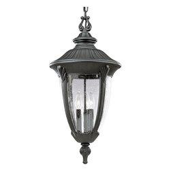 Progress Lighting - Progress Lighting P5520-31 3-Light Hanging Lantern with Clear Seeded Glass - Progress Lighting P5520-31 3-Light Hanging Lantern with Clear Seeded Glass