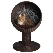 Contemporary Pet Supplies by The Refined Feline