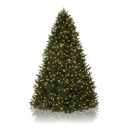 Balsam Hill - 5.5' BH Fraser Fir Artificial Christmas Tree - Clear Easy Plug - Majestic and elegant, the 5.5 feet BH Fraser Fir showcases real-looking green foliage with silver undertones. Draped with clear lights, this artificial Christmas tree instantly brightens up rooms with its gorgeous design. Balsam Hill�s mission is to create the world�s most beautiful and realistic artificial Christmas trees.� We are committed to providing our customers with a picture-perfect holiday.� With innovations like hinged branches and options like remote-controlled pre-strung lights, our luxurious trees will let you sit back and enjoy Christmas to the fullest, this year and for years to come.� Our trees are designed using branches from real trees, and our exclusive True Needle technology creates the most realistic looking and feeling branch tips.� You and your guests may not believe that your gorgeous Balsam Hill Christmas tree is artificial. Balsam Hill�s trees have won awards for their realism and have been featured in movies, television shows, and celebrity homes.� Our wide range of styles and sizes ensures you will be able to find a tree that fits perfectly in your home.� We also have a range of beautiful wreaths and garlands to put the finishing touches on your home this holiday season.