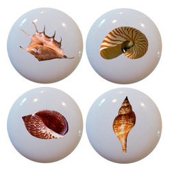 Carolina Hardware and Decor, LLC - 4 Seashell Ceramic Cabinet Drawer Knobs - New 1 1/2 inch ceramic cabinet, drawer, or furniture knobs with mounting hardware included. Also works great in a bathroom or on bi-fold closet doors (may require longer screws). Item can be wiped clean with a soft damp cloth. Great addition and nice finishing touch to any room!