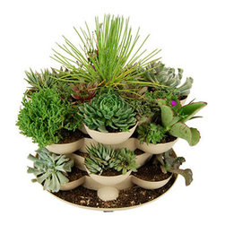 Sand Colored Stack & Grow Planter with Cactus - Incredible indoor / outdoor stackable garden planter with a wheeled base. Just stack & grow. Grow herbs, flowers, house plants, cactus garden, more. Made in the USA. Durable, UV resistant material. 5 colors.