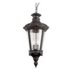 Trans Globe Lighting - Trans Globe Lighting 40166 BK Outdoor Hanging Light In Black - Part Number: 40166 BK
