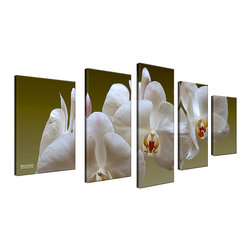 Ready2HangArt - Ready2HangArt Bruce Bain 'White Orchid' 5-piece Set Canvas Wall Art - This beautiful 5-piece canvas wall art is from photographer Bruce Bain. His work employs elements of imagination to capture a variety of subjects. It is fully finished, arriving ready to hang on the wall of your choice. This wall decoration features a stunning photograph of white orchids spanning five separate stunning canvases. When together, each canvas of varying dimensions contributes to wall carrying image. The piece is two inches thick, and the image is an ink print which allows for crisp detains which literally pop from the wall.