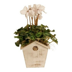 Wald Imports Whitewash Wood Birdhouse Planter - Let the birds have the trees and let your flowers enjoy the Wald Imports Whitewash Wood Birdhouse Planter. This planter is crafted in classic birdhouse style using charming, whitewashed wood for a pleasant, rustic style. Take your pick from our various size options for your favorite plants.Product dimensions:Small planter: 4.75L x 4.75W x 6.5H in.Large planter: 4.6L x 6W x 8H in.About Wald ImportsOver 30 years of specializing in floral, gift basket and specialty containers has given Wald Imports a reputation for helping their customers find the best way to present gifts and floral arrangements, and it really shows! By using a wide range of materials in almost any size or style, a Wald Imports container is practically a gift all by itself. Based in Washington since its inception in the 1970s, this consumer-driven company has been helmed every day by a member of the Wald family who is dedicated to making floral arrangements and gifts into the thoughtful and enjoyable pieces that we all want them to be.