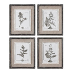 Uttermost - Uttermost Casual Grey Study I II III IV (Set of 4) - Uttermost Casual Grey Study I II III IV is a part of Grace Feyock Collection by Uttermost Prints are surrounded by light tan burlap mats. Frames have a heavily distressed black finish with a gray and taupe wash. The inner lips and liners have a medium wood tone base with heavily distressed painted white finish with a gray & taupe glaze. Art Object (4)