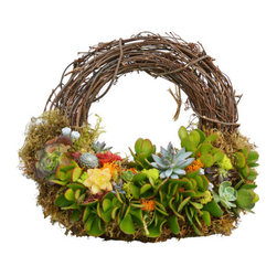 "Urban Farm Girls - Living Wreath Athena 12"" - This succulent wreath is made with real, live plants! Add a splash of green this season with the 12"" Athena living wreath. Planted with a mix of succulents on a grapevine wreath, is guaranteed to be the perfect gift to make someone smile! Great indoors or out."