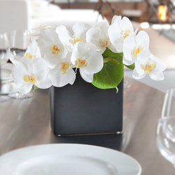 Silk Orchid Arrangement Zest - Create charm and bring attention to your space with white silk Phalaenopsis orchids and green Anthurium in elegant ceramic vase.