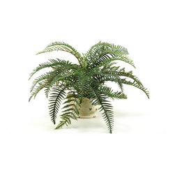 D&W Silks - D&W Silks River Fern in Ceramic Planter - With the traditional appearance of this river fern set in an antique reproduction planter, you'll be able to maintain a stylish look with no effort! great for a table or shelf, you only need to fluff the fern branches out once to have a full plant that doesn't require any care or maintenance. Comes assembled as pictured, this piece will maintain it's color and shape for years to come.