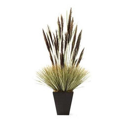 Dalmarko Designs - Pampus Dracena - Our exclusive Dracena tree is locally grown in California and handcrafted by our artisans with over 30 years of experience.