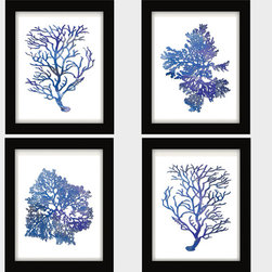 Blue White, Blue Coral, Blue Coral Wall Art, Blue Watercolor, Blue White Art - Four renditions of antique sea corals and sea kelp digitally colored in various shades of blue watercolor: from navy to cobalt and periwinkle.