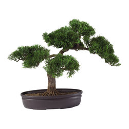 "Nearly Natural - 16"" Cedar Bonsai Silk Plant - At 16 inches tall, this Cedar bonsai adds a soft touch of elegance to any room. Both the delicately crafted leaf pattern and the carefully designed branches make this tree a popular gift item for any occasion. Encased in a circular container filled with artificial soil, this bonsai tree provides a sense of peace and tranquility to your home or office area."