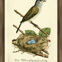 Wendover Art - Bird and Nest Thorns - This striking Giclee on Paper print adds subtle style to any space. A beautifully framed piece of art has a huge impact on a room for relatively low cost! Many designers and home owners select art first and plan decor around it or you can add artwork to your space as a finishing touch. This spectacular print really draws your eye and can create a focal point over a piece of furniture or above a mantel. Each unique art piece is printed & manufactured in the USA. Please allow 4 weeks for delivery as each piece is printed to order & requires careful handling. In a large room or on a large wall, combine multiple works of art to in the same style or color range to create a cohesive and stylish space!