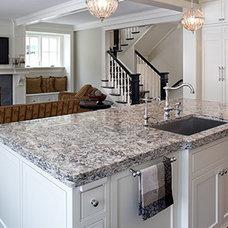 Contemporary Kitchen Countertops by True North Quartz