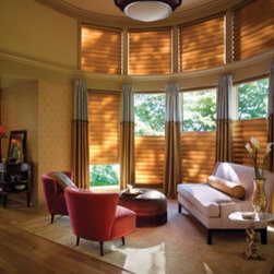 Traditional Window Blinds -