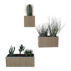 The Woody Beckers - White Oak Wall Planters, accented with White Laminate, plants not included - Spruce up your home with this set of wall planters made from sustainable White Oak and accented with White Laminate.  Includes plant liners, wall mounting instructions, and hardware.  Plants are not included.