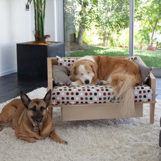 Modern Pet Beds by Saint Roch Designs