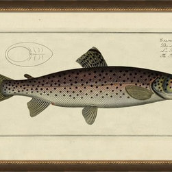 Wendover Art - Brown Trout - This striking Giclee on Paper print adds subtle style to any space. A beautifully framed piece of art has a huge impact on a room for relatively low cost! Many designers and home owners select art first and plan decor around it or you can add artwork to your space as a finishing touch. This spectacular print really draws your eye and can create a focal point over a piece of furniture or above a mantel. Each unique art piece is printed & manufactured in the USA. Please allow 4 weeks for delivery as each piece is printed to order & requires careful handling. In a large room or on a large wall, combine multiple works of art to in the same style or color range to create a cohesive and stylish space!