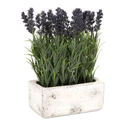 Potted Lavender - The antiqued cement planter is filled with this botanical explosion of lavender, adding a freshness to any home.